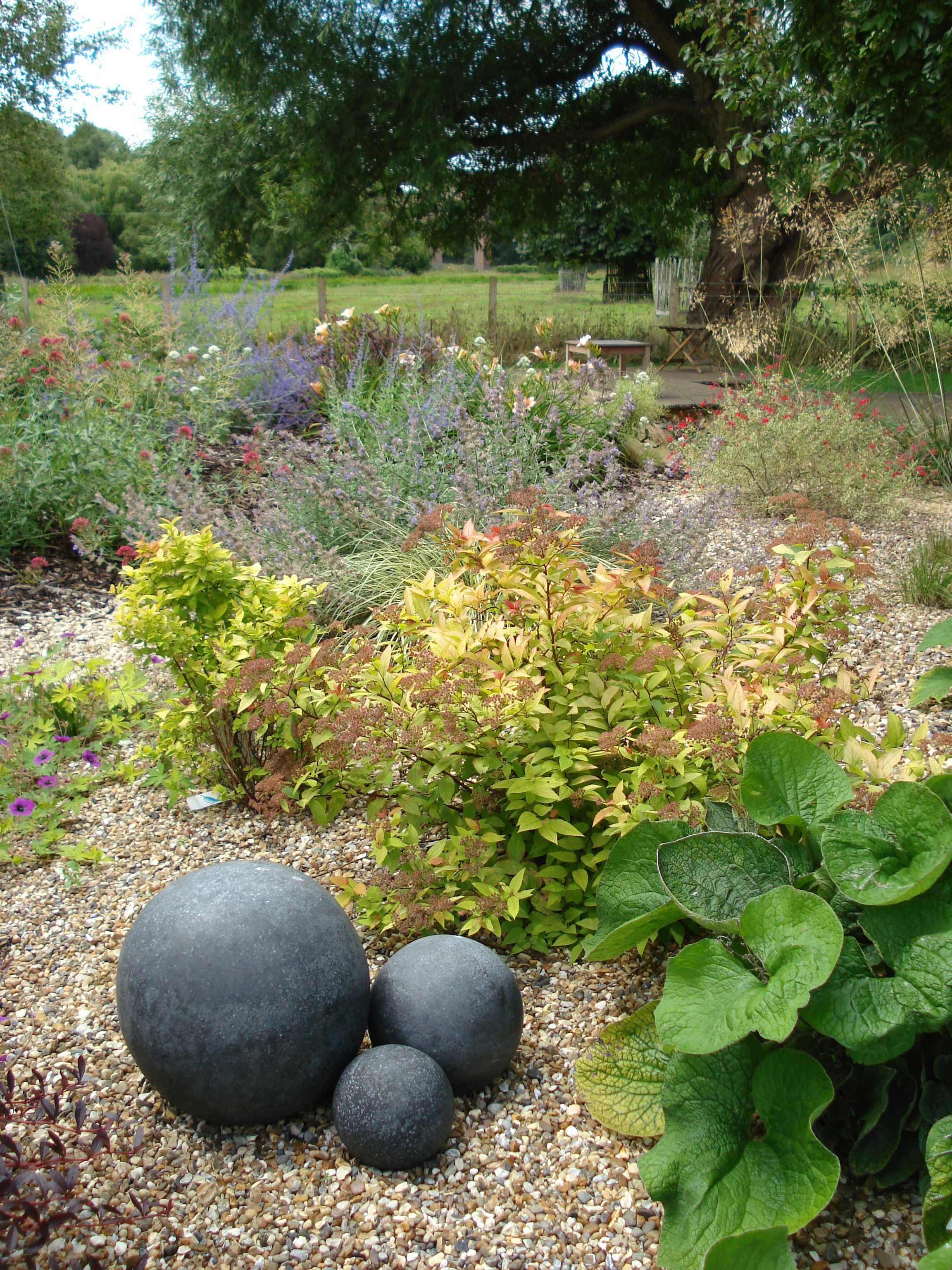 The drought-tolerant dry garden