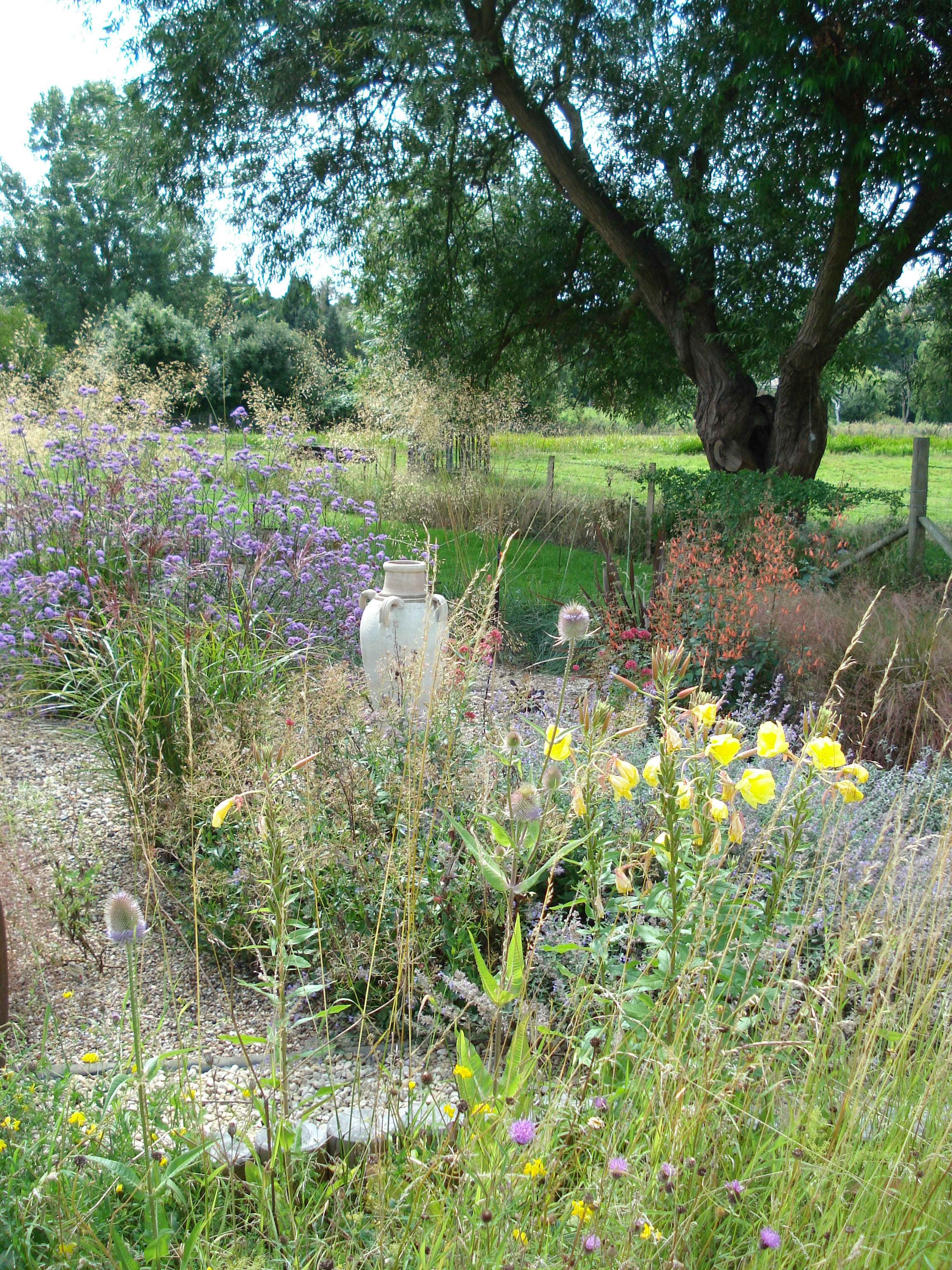 Tall perennials mix with swaying grasses with the meadow beyond